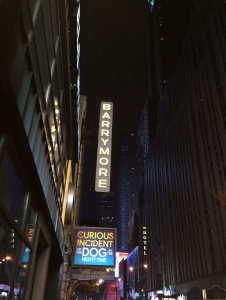 The Curious Incident of the Dog in the Night-Time at the Barrymore Theatre.